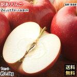 りんご訳ありリンゴ送料無料約1.5kg長野・青森県産2セットで1セットおまけサンふじつがるジョナゴールドふじ林檎