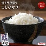 送料無料米こしひかり5kg熊本県産29年産お米白米玄米ひのひかり森のくまさん
