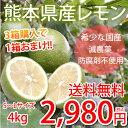 レモン 国産レモン 送料無料 熊本県産 4kg S〜L 3箱...