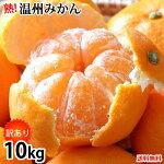 みかん10kg訳あり温州みかん送料無料熊本みかん熊本県産蜜柑ミカン