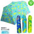 男の子用折りたたみ傘50cm「きょうりゅう柄」
