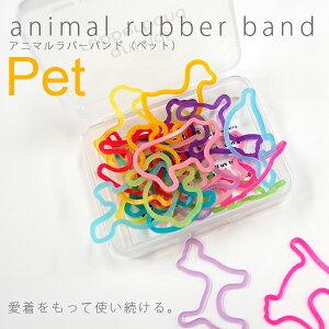 アニマルラバーバンド Pet 24pギフトボックス アッシュコンセプト【楽ギフ_包装】【楽ギフ…