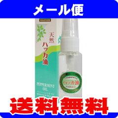 [メール便送料無料][北海道北見産の天然ハッカ油使用]天然ハッカスプレー(大) 30ml