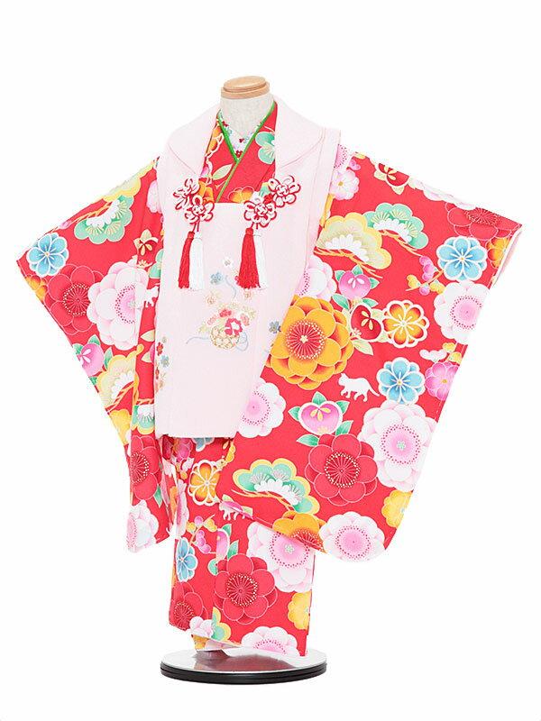 【レンタル】七五三レンタル 女の子 3歳着物フルセット赤色着物×白色被布 松と猫 被布セット 子供着物 貸衣装 3050