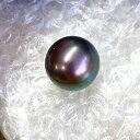 【在庫処分値下げ】 【鑑別書付】世界最大級 本黒蝶真珠 パール 19mm