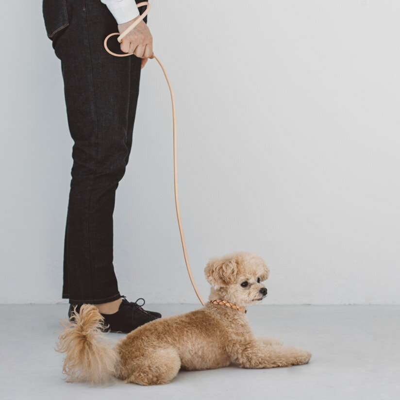 【犬リード】オリジナルヌメリングリードSサイズ犬リード犬リード小型犬中型犬革皮革製レザーおしゃれ犬のリード犬リード犬リード小型犬チワワ