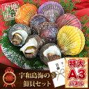 目録 景品 ビンゴ 【宇和島海の幸 鮮貝セット】 A3パネル付き...