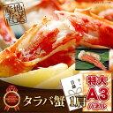 目録 景品 二次会 【タラバ蟹(1肩 500g)】 A3パネ...