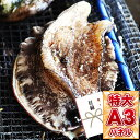 目録 景品 ビンゴ 【国産 天然活黒アワビ Lセット】 A3
