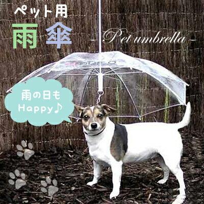 雨の中でもペットとお散歩「ペットアンブレラ」って知ってる?