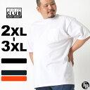 【ビッグサイズ】 PRO CLUB プロクラブ tシャツ メンズ ブランド 無地 プロクラブ ポケt プロクラブ ヘビーウェイト tシャツ 無地 proclub tシャツ 半袖 メンズ 黒 ブラック 白 ホワイト heavyweight 大きいサイズ メンズ tシャツ 2L/3L (USAモデル)