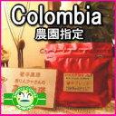 焙煎コーヒー豆の当日発送