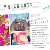 ラウンドタオル 大判ビーチラグ パイナップル BIGMOUTH ビッグマウス ビーチ THE BEACH PEOPLE 海 フェス ヨガマット ブランケット アメリカ