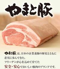 やまと豚味付け肉7点セットNS-D