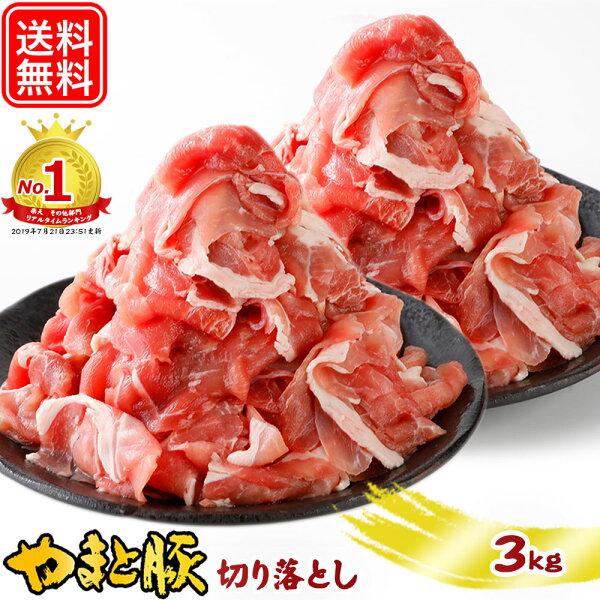 最大800円OFFクーポン 国産やまと豚切り落とし肉メガ盛り3Kg|母の日父の日2021プレゼント実用的花以外お中元豚肉小分け