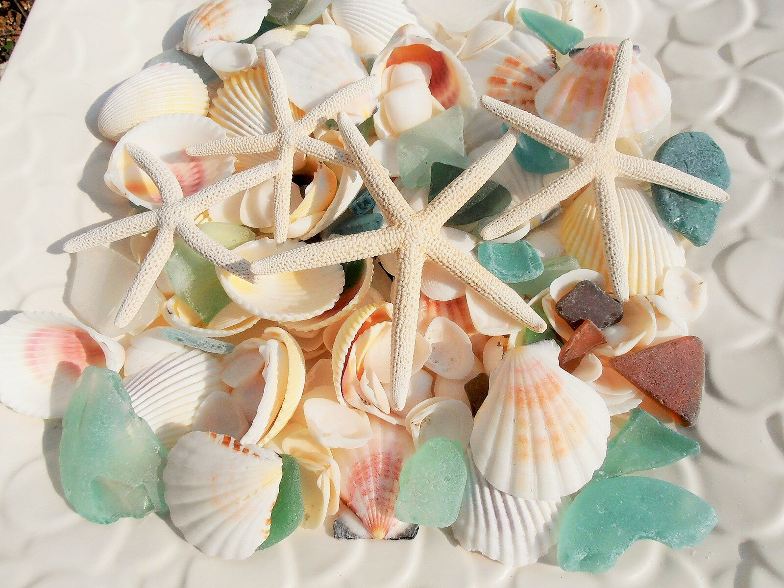天然素材 A品 ヒトデ 4P 白い 貝殻 シーグラス セット 500gBIGパック ハワイインテリア ブライダルディスプレイ 手作り素材 クラフト工作材料 マリン雑貨