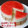 フロム蔵王山元町いちご畑チーズケーキ4号