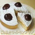 【送料込み】◇ホワイトデー◇ホワイト・モンブラン4号