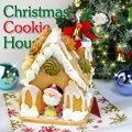 ★Xmas★クリスマスクッキーハウス【送料込み】