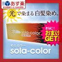 健康美容用品専門店Frontrunnerで買える「【あす楽対応】【さらに選べるおまけ付き】【白髪染めクリーム】そらカラー(sola-color光ヘアクリーム80g ‐ 太陽光や自然光で白髪が自然な色に染まる新しいタイプの染毛クリーム!-V-Zone Heat Cutter any(エニィシリーズ!【HLS_DU】」の画像です。価格は1,800円になります。