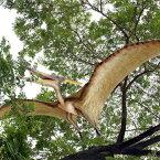 FRP恐竜オブジェ 巨大プテラノドン 置物 白亜紀 翼竜類 標本 博物館 店舗 イベント ディスプレイ 実物大 等身大 リアル 【whlny】