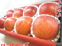 長野県産 ふじ りんご 大玉8個入り 送料無料 11月下旬頃から発送予定【楽ギフ_包装】【楽ギフ_のし宛書】【楽ギフ_メッセ入力】【RCP】りんご リンゴ 林檎