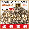 TVで話題のダイエットで注目!希少な愛媛・香川産100%もち麦ダイシモチ500g送料無料