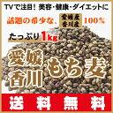 TV名医のTHE太鼓判!で放映ダイエットで注目!希少高品質な愛媛・香川産100%もち麦・ダイシモチ1kg(500gX2袋)送料無料