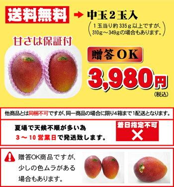完熟宮崎マンゴー大玉2玉入(2Lサイズ)送料無料