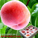 大糖領の桃 一桃匠の桃 加納岩のぴー 一宮プレミアムの桃 春日居の桃 もも モモ 8玉入り 高糖度の ...