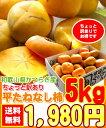 9月下旬より出荷【送料無料!】【滑らかな食感甘味満載!】柿の...