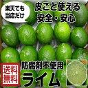 【全国送料無料】(メキシコ産 ライム 1kg)約8〜10個 ポストハーベスト農薬不使用 メキシ…