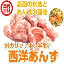 (西洋あんず240g/80gが3パック)  ドライフルーツ ...