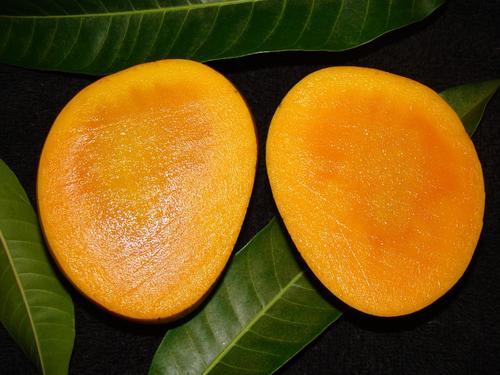 ドライフルーツ>ハラール認証>無添加ドライマンゴー(農薬不使用栽培)