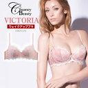 チェスニービューティ Chasney Beauty ヴィクトリア VIctoria ウェイクアップブラ WAKE UP BRA 3/4カップブラ 育乳ブラ ブラジャー 育乳 2017SS CB823/151
