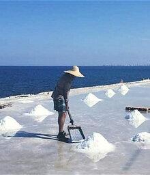 salt06
