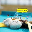 【SALE!7,999円!10/31(土)12:59迄】【訳...