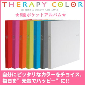 ポケット アルバム ナカバヤシ セラピー カラフル