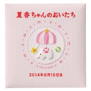 アルバム タイトル リニューアル ナカバヤシ フエルアルバム モービル