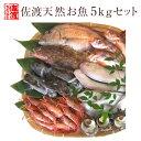 【送料無料 】 ボリュームタップリ佐渡天然お魚セット約5キロ