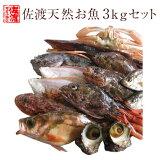 【送料無料 】 佐渡天然お魚セット約三キロ入って¥4280 とにかくいろんな魚が入ってます!!