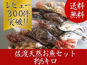 ボリュームタップリ佐渡天然お魚セット約5キロ入って¥4480とにかくいろんな魚が入ってます!!