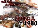 【送料無料】 佐渡天然お魚お試しセット約三キロ入って¥1980 とにかくいろんな魚が入ってま...