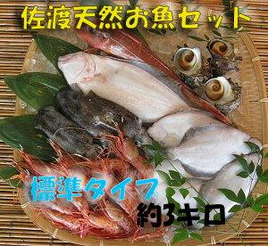 全国送料無料 【送料無料 】 佐渡天然お魚セット約三キロ入って¥2980 とにかくいろんな魚が...