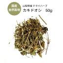 国産 ハーブ 山梨県産 ドライハーブ 【カキドオシ】50g