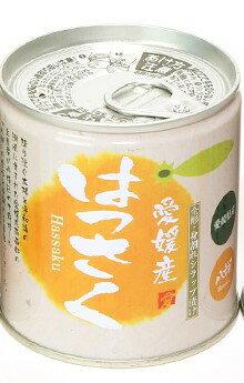 愛媛産柑橘缶詰 はっさく缶シラップづけ 5号缶 295g×24個セット みかん 果物 缶詰 フルーツ はっさく 国産 フルーツ缶詰