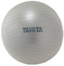 【タニタ】ジムボールシルバー TS-952(バランスボール・エクササイズボール) 1個