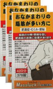 【送料無料】【第2類医薬品】お腹まわりの脂肪が多い方に、マスラックII378錠(42日分)×2個セット