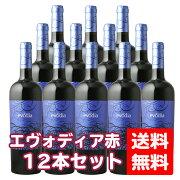送料無料セット日酒販エヴォディア750ml赤12本(1ケース)エボディアevodia赤ワインレッドワインコスパ重視ミディアムボディ