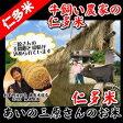 【安心玄米】平成28年産・仁多米コシヒカリ『あいのはで干し米』玄米1kg (牛飼い農家の天日干し米) ※精米無料